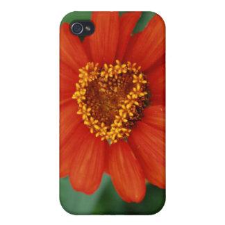 Sie machen meine Herzblüte iPhone 4 Etui