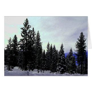 Sierra Nevada-Winter Karte