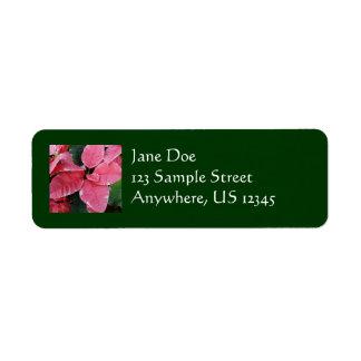 Silberne Stern-Marmor-Poinsettia-rosa Feiertag mit
