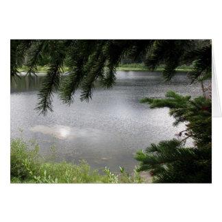 Silberner See gerahmt durch immergrüne Äste Karte
