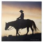 Silhouette eines Cowgirls auf ihrem Pferd gegen Keramikfliese