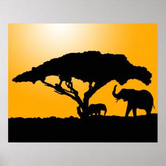 Silhouettes d'éléphant au coucher du soleil posters