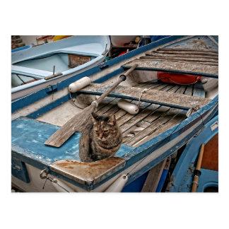 Sinbad die Seemann-Katzen-Postkarte Postkarte