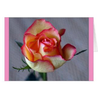 """Single-Rose "" Karte"