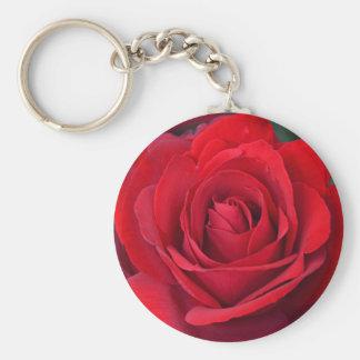 Single-Rote Rose in der vollen Blüte Schlüsselanhänger