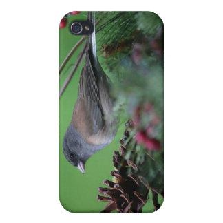 Singvogel im Feiertag 4/4S einstellend iPhone 4/4S Hülle