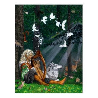 Singvögel - Postkarte