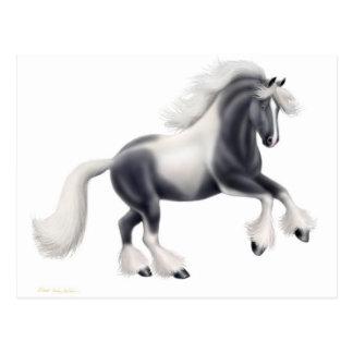 Sinti und Roma Vanner Pferdepostkarte Postkarte