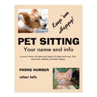 Sitzender Hunde- und Katzen-Flyer des Haustieres 21,6 X 27,9 Cm Flyer