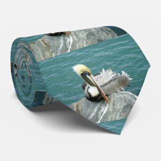 Sitzender Pelikan Krawatte