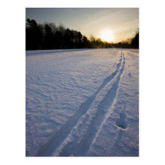 Skibahnen an der Willowbrook Bauernhof-Konserve Postkarte