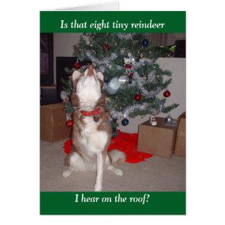 Skyes frohe Weihnachten Karte