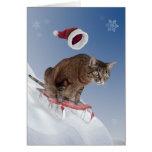 Sledding Katzen-Weihnachtskarte