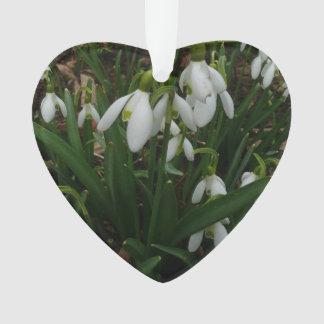 Snowdrops I (Galanthus) weiße Frühlings-Blumen Ornament