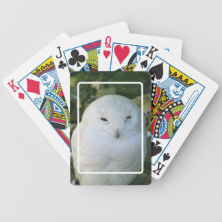 Snowy-Eulen-Spielkarten Bicycle Spielkarten