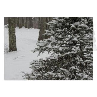 Snowy-Kiefern-Feiertags-Karte Karte