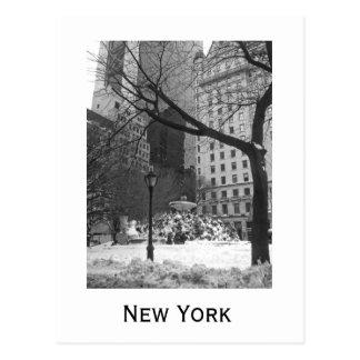 Snowy-Park in New York Postkarte