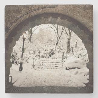 Snowy-Schutz im Central Park Steinuntersetzer