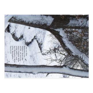 Snowy-Strom Postkarte