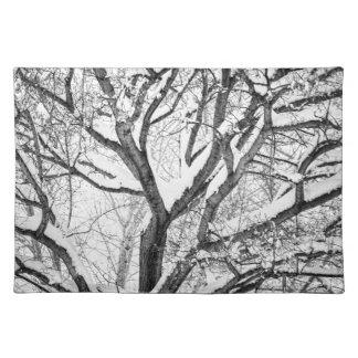 Snowy-Winter verflechten sich Tischset