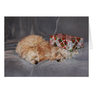 Snuggling Welpe Weihnachtskarte Grußkarte