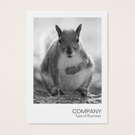 Sofortiges Foto 045 - grauer Eichhörnchen BW Visitenkarte