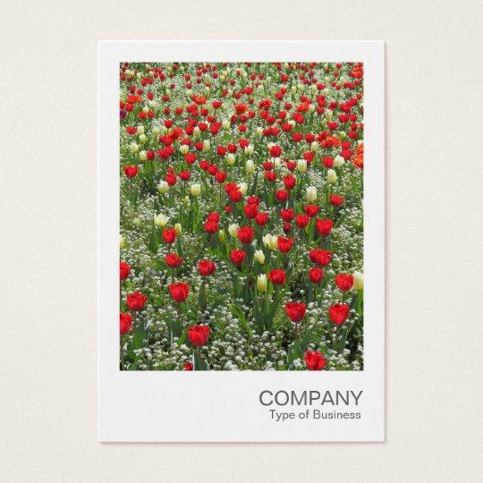Sofortiges Foto 085 - Bett der Tulpen Visitenkarte