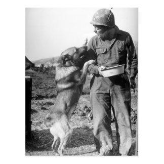 Soldat und sein Schäferhund WWII Postkarte
