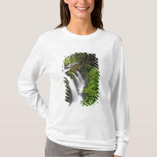 Solenoid Duc fällt in olympischen Nationalpark T-Shirt