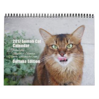 Somalische Katze 2017, die Sommer-Samba Wandkalender
