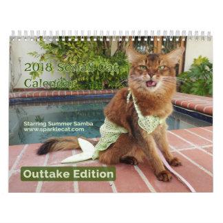 Somalische Katze, mit Wandkalender