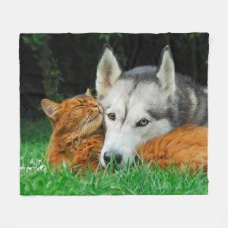 Somalische Katze niedliche Freunde sibirischen Fleecedecke