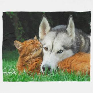 Somalische Katze und niedliche Freunde des Fleecedecke