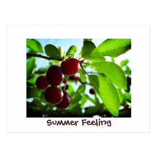 Sommer-Gefühl - rote Kirschen Postkarte