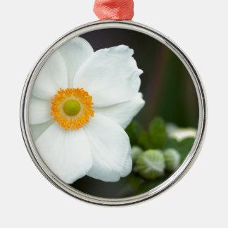 Sommeranemone Silbernes Ornament