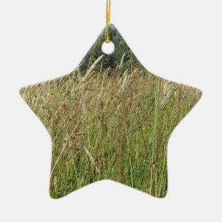 Sommerlandschaft des wilden Feldes. Toskana, Keramik Ornament