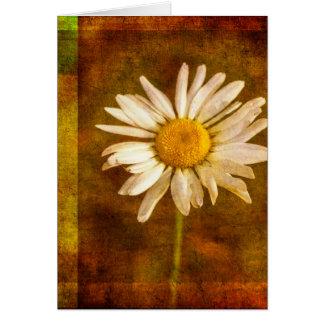 Sommerzeit-Gänseblümchen Grußkarte