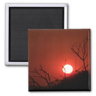 Sonnenaufgang Phinda an der privaten Spiel-Reserve Quadratischer Magnet