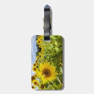 Sonnenblume-Feld-Gepäckanhänger Kofferanhänger