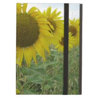 Sonnenblume-Foto iPad Fall
