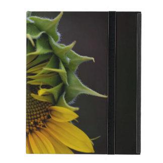 Sonnenblume iPad Hüllen