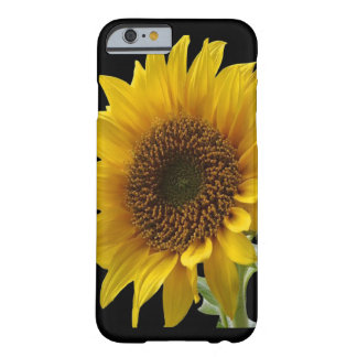 Sonnenblume IpHone Fall für sie Barely There iPhone 6 Hülle