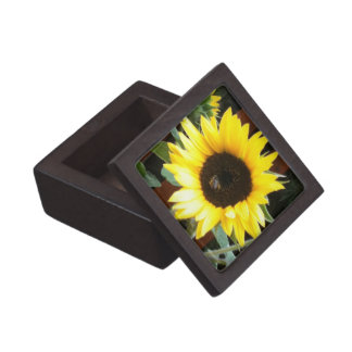 Sonnenblume Kiste