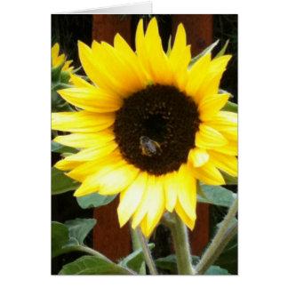 Sonnenblume Mitteilungskarte