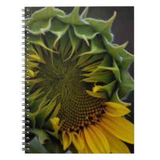 Sonnenblume-Notizbuch Spiral Notizblock