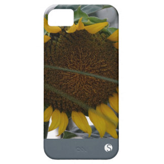 Sonnenblume Selfie iPhone 5 Case