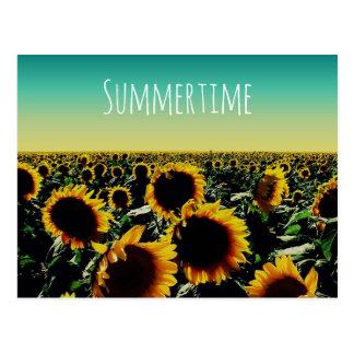 Sonnenblume-Sommerzeit Postkarte