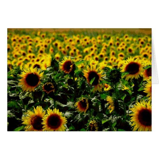 Sonnenblumefeld Grußkarte