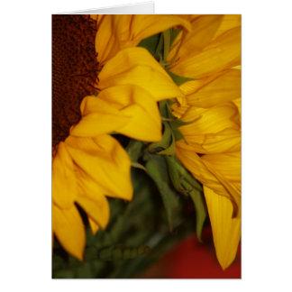 Sonnenblumen Karte