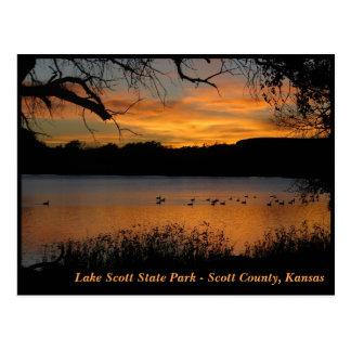 Sonnenuntergang am See-Scott-Staats-Park - Gänse Postkarte